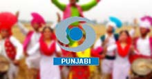DD Punjabi Live TV Streaming