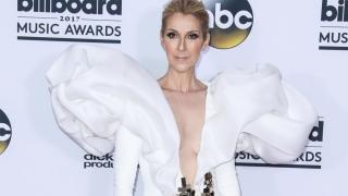 Celine Dion cancels Vegas shows for ear operation