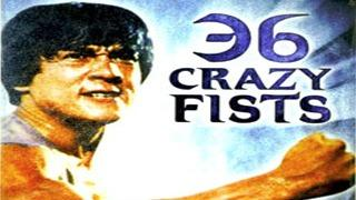 The 36 Crazy Fists | Jackie Chan | 1977 | Full length hindi movie