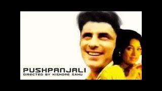 Pushpanjali || Classic Hindi Movie || Bollywood Movie || Sanjay Khan || Naina Sahu