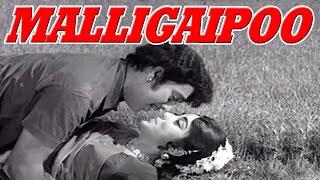 Tamil Movie | Malligaipoo | Classical Blockbuster Full Romantic Movie