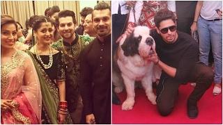 Neil-Rukmini's Wedding Reception Photos | Sidharth At A Dog Show
